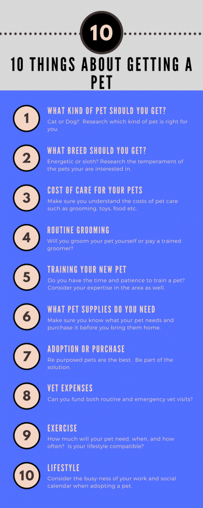 10 things to ask yourself about getting a pet infographic