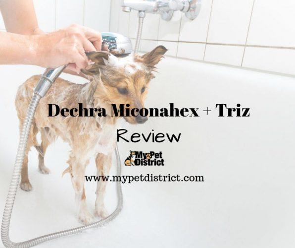 dechra miconahex triz shampoo