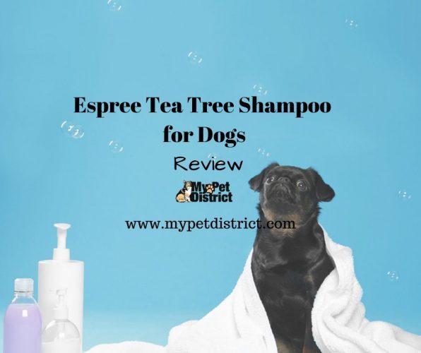 tea tree shampoo for dogs