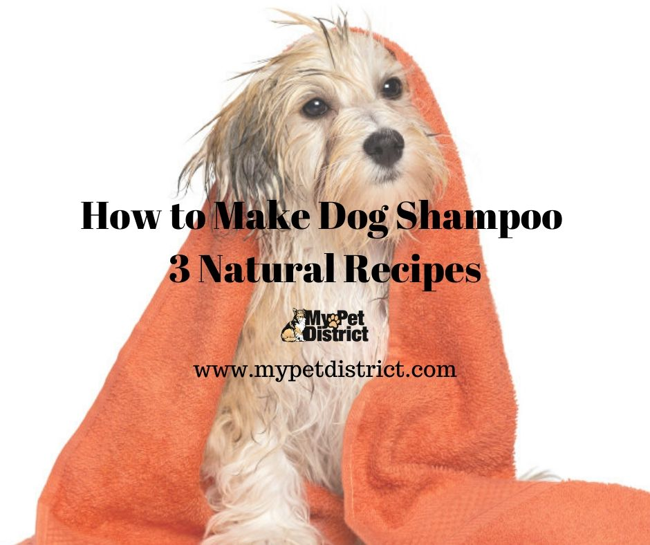 how to make dog shampoo