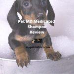 Pet MD - Antiseptic And Antifungal Medicated Shampoo