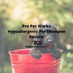 Pro Pet Works Hypoallergenic Oatmeal & Aloe Cat and Dog Shampoo For Pets Review